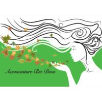 Parrucchiera Unisex Acconciature Bio Diva